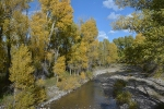Teton biodiversity