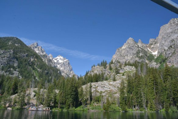Take the boat to Cascade Canyon and expore the forest, slopes, and talus for flowers.