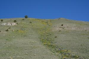 East Gros Ventre Butte